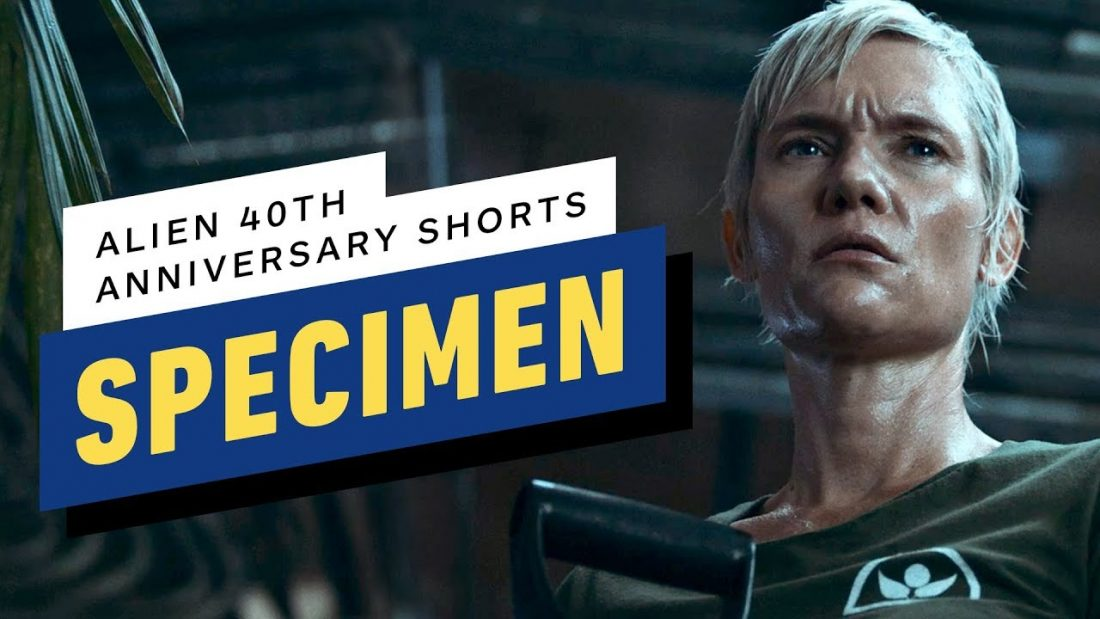 Alien: Specimen - IGN divulga o segundo curta dos 40 anos de aniversário de Alien.