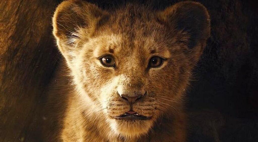 Rei Leão - Simba
