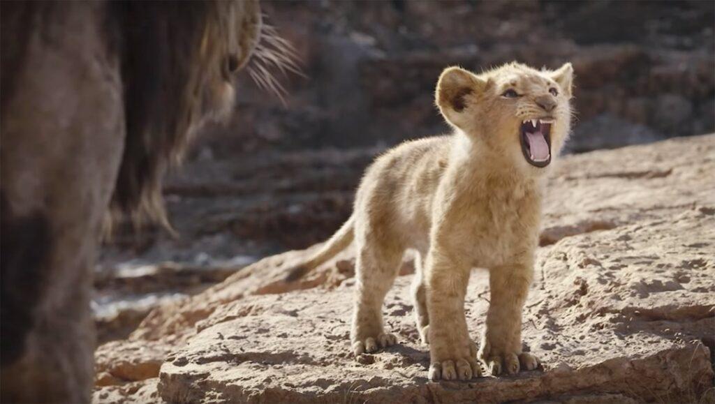 O Rei Leão Live-Action de Jon Favreau