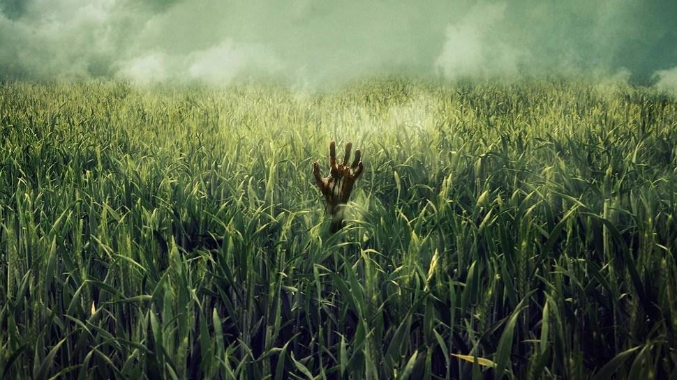 Campo do Medo | Terror baseado na obra de Stephen King na Netflix