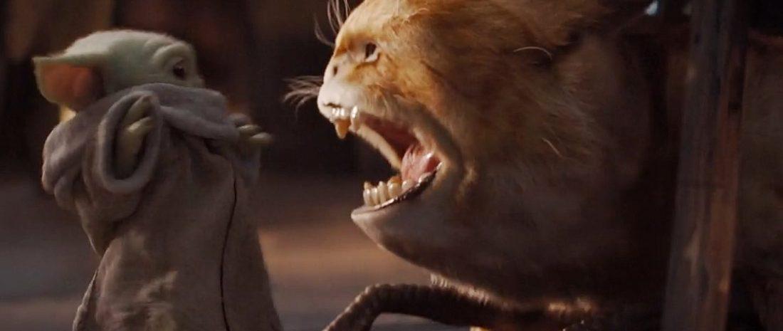 The Mandalorian Primeira Temporada animal ataca Baby Yoda - The Mandalorian | Quiz da Primeira Temporada