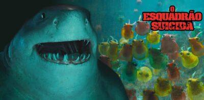 O Esquadrão Suicida | Que criaturas do mar Nanaue, conhecido como King Shark, faz amizade?