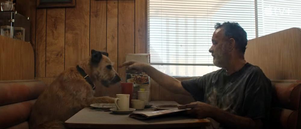 Finch Amblin divulga primeiro trailer ficcao cientifica de Tom Hanks para streaming Apple TV Plus imagem4 - Finch   Amblin divulga o primeiro trailer da ficção científica de Tom Hanks para o streaming Apple TV Plus