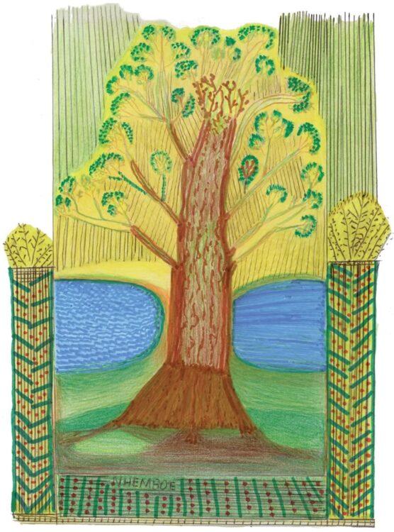 escola nhembo ea 556x750 - Livro bilíngue reúne Desenhos e Histórias da Cultura Guarani